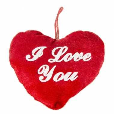 Pluche rood hart kussen i love you 13 cm kado