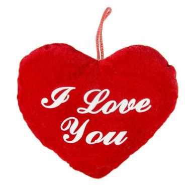 Pluche rood hart kussen i love you 22 cm kado