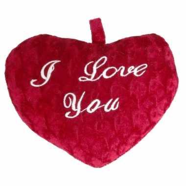 Pluche rood hart kussen i love you 24 x 19 x 7 cm kado