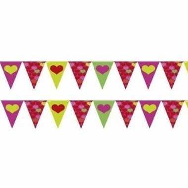 Valentijn 2x gekleurde hartjes vlaggenlijnen van 4 meter per stuk kad