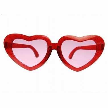 Valentijn grote bril met hartjes montuur 23 cm kado