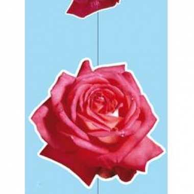 Valentijn hang decoratie rozen kado