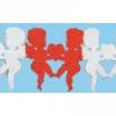 Valentijn hartjes slinger amor kado