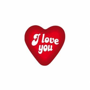 Valentijn i love you decoratie bord 49 cm kado