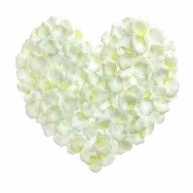 Valentijn witte rozenblaadjes 500 stuks kado