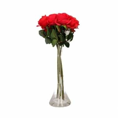 Valentijnskado 10 rode rozen in vaas kado