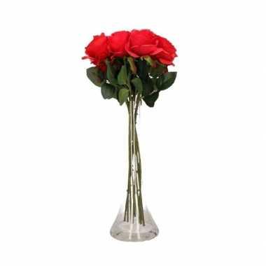 Valentijnskado 12 rode rozen in vaas kado