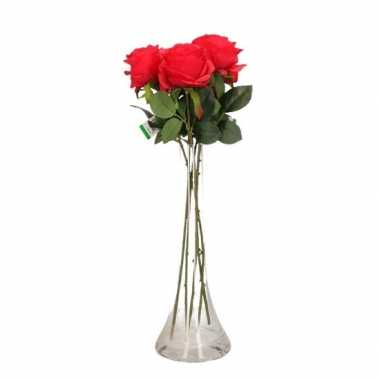 Valentijnskado 5 rode rozen in vaas kado 10101132