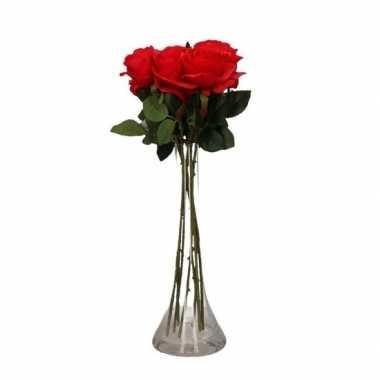 Valentijnskado 6 rode rozen in vaas kado