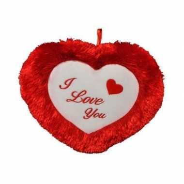 Valentijnskado hart kussen 45 cm i love you