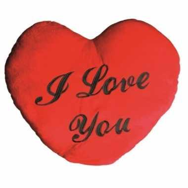 Valentijnskado i love you kussen 60 cm