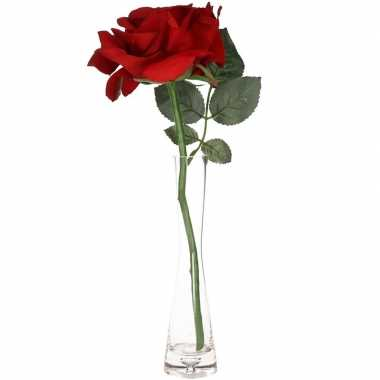Valentijnskado rode roos 31 cm in smalle vaas