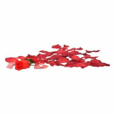 Valentijnskado voordelige rode roos met bordeaux rozenblaadjes