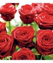 Rode rozen servetten 20 stuks kado