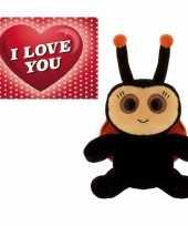 Valentijn valentijns kado lieveheersbeestje knuffel en valentijnskaart